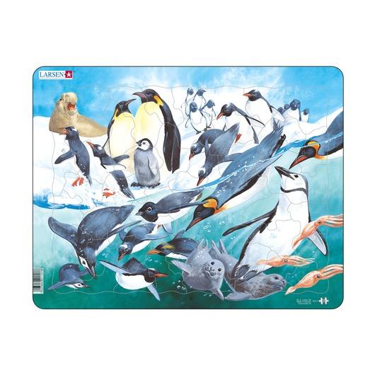 Пазл Пингвины, 50 деталей