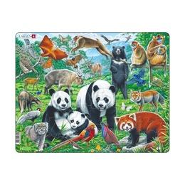 Пазл Дикие животные Азии, 56 деталей