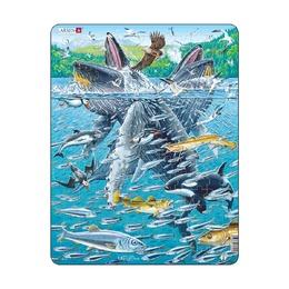 Горбатые киты в стае сельди, 140 деталей